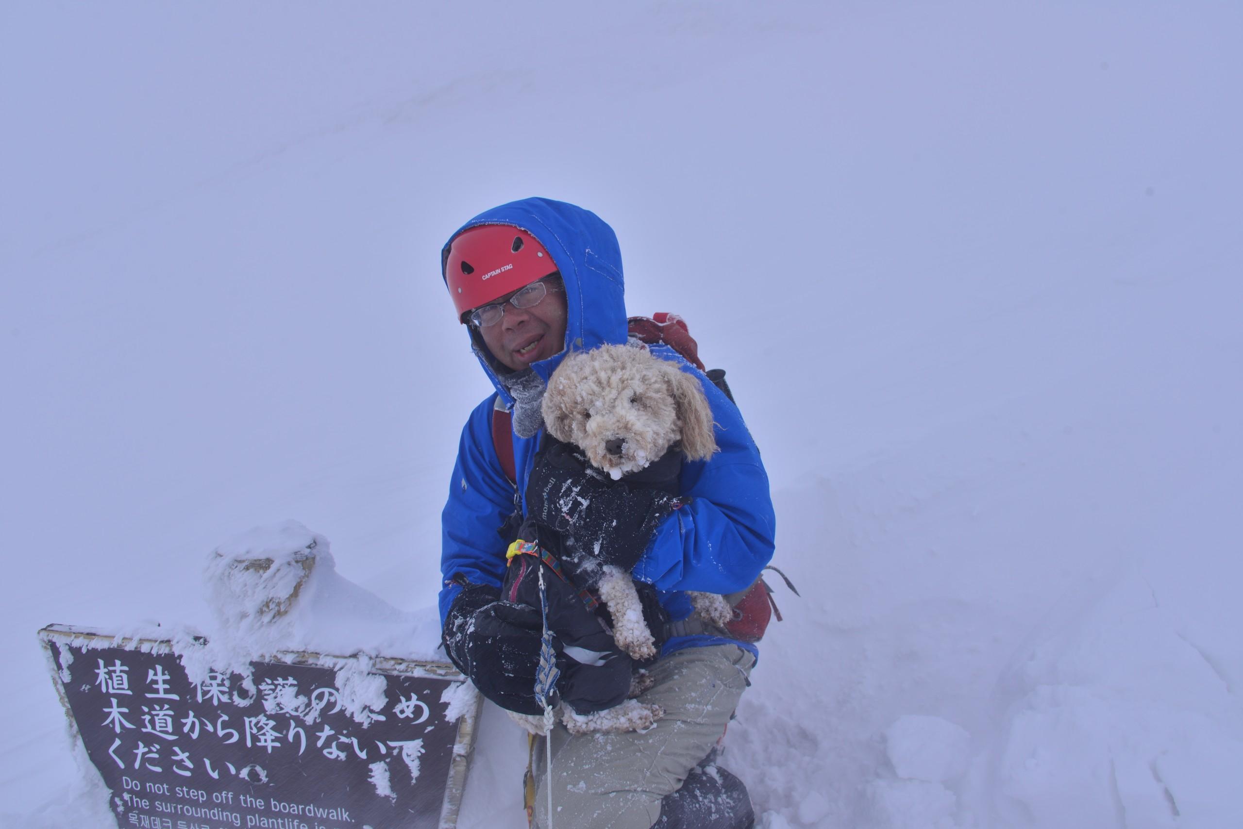 冬山に愛玩犬を連れて崖下50m滑落させる登山ブログが動物虐待だと話題に