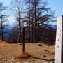 鷹ノ巣山・七ツ石山(鴨沢バス停からJR奥多摩駅)