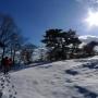 表丹沢県民の森〜トカゲ沢〜稲郷沢右股〜櫟山