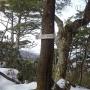作場平を起点とし、燕山-古札山-水晶山を縦走して雁坂峠までの日帰りピストンルート。