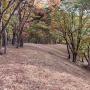 鷹ノ巣山〜六ツ石山〜奥多摩駅縦走
