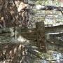 徳和乾徳山登山口(オソバ沢コース)ー国師ヶ原ー月見岩ー扇平ー乾徳山ー下山は月見岩から道満尾根