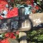 高尾山(稲荷山コースから1号路)
