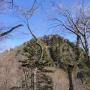 宮が瀬 塔ノ岳 大倉コース (一般登山道ですが初心者は注意かも)