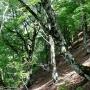 百里ケ岳(上根来から木地山峠の周回コース)