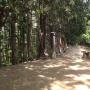 高麗駅~日和田山~物見山~北向地蔵~五常の滝~武蔵横手駅