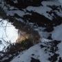 名栗湖から棒ノ嶺