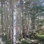 縞枯山〜茶臼山〜高見石〜中山〜東天狗岳