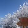 三峰山(不動滝ルート・山頂・八丁平・登り尾ルート)