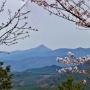 高見山(杉谷登山口-小峠-杉谷平野分岐-山頂<往復>)