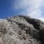 黍殻山(きびがらやま)登山口より青根分岐を経て姫次を経由し蛭ヶ岳