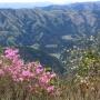 バケモノ山から浅間嶺まで