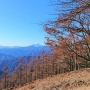 雲取山(鴨沢バス停往復)