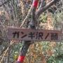 三輪神社〜御正体山〜岩下ノ丸〜道坂峠