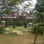 瑞宝寺谷東尾根(十八丁尾根)〜白石谷