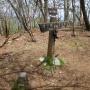 用木沢、犬越路経由大室山・加入道山白石の滝コース