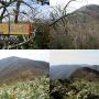 三国岳(福井県側から夜叉ヶ池経由でピストン)