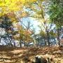 熊倉尾根〜熊倉山(火打岩)〜前飛龍〜禿岩〜飛龍山〜雲取山〜三条の湯〜サヲラ峠〜丹波山温泉