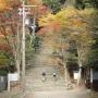 愛宕山大杉谷コース(清滝・大杉谷を経て月輪寺コース途中から愛宕神社)