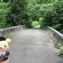 逢山峡〜裏逢山峡〜猪ノ鼻滝見平〜逢山峡(裏六甲有野町)