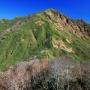 経ケ岳から法恩寺山の周回コース