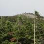 縞枯山&茶臼山※北八ヶ岳ロープウェイ山麓駅から白駒池まで周遊