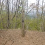 秋山二十六夜山 アオゲラの森キャンプ場周回ルート