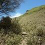 白髪山からアップダウンの連続で三嶺へ