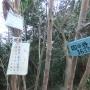 雲山峰(山中渓駅〜雲山峰〜紀伊駅)