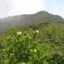 ホロホロ山〜オロオロ山