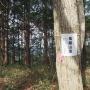 小町山ハイキングコース 鬼越山コース〜仲良し小道〜男坂〜小町山〜女坂〜尾根コース