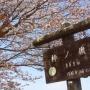 真名井沢〜蕎麦粒山もどって棒ノ嶺