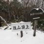 鞍掛山(鶴ケ滝コース