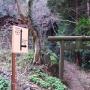 太平山〜晃石山〜諏訪岳〜唐沢山