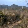 葦毛湿原から神石山